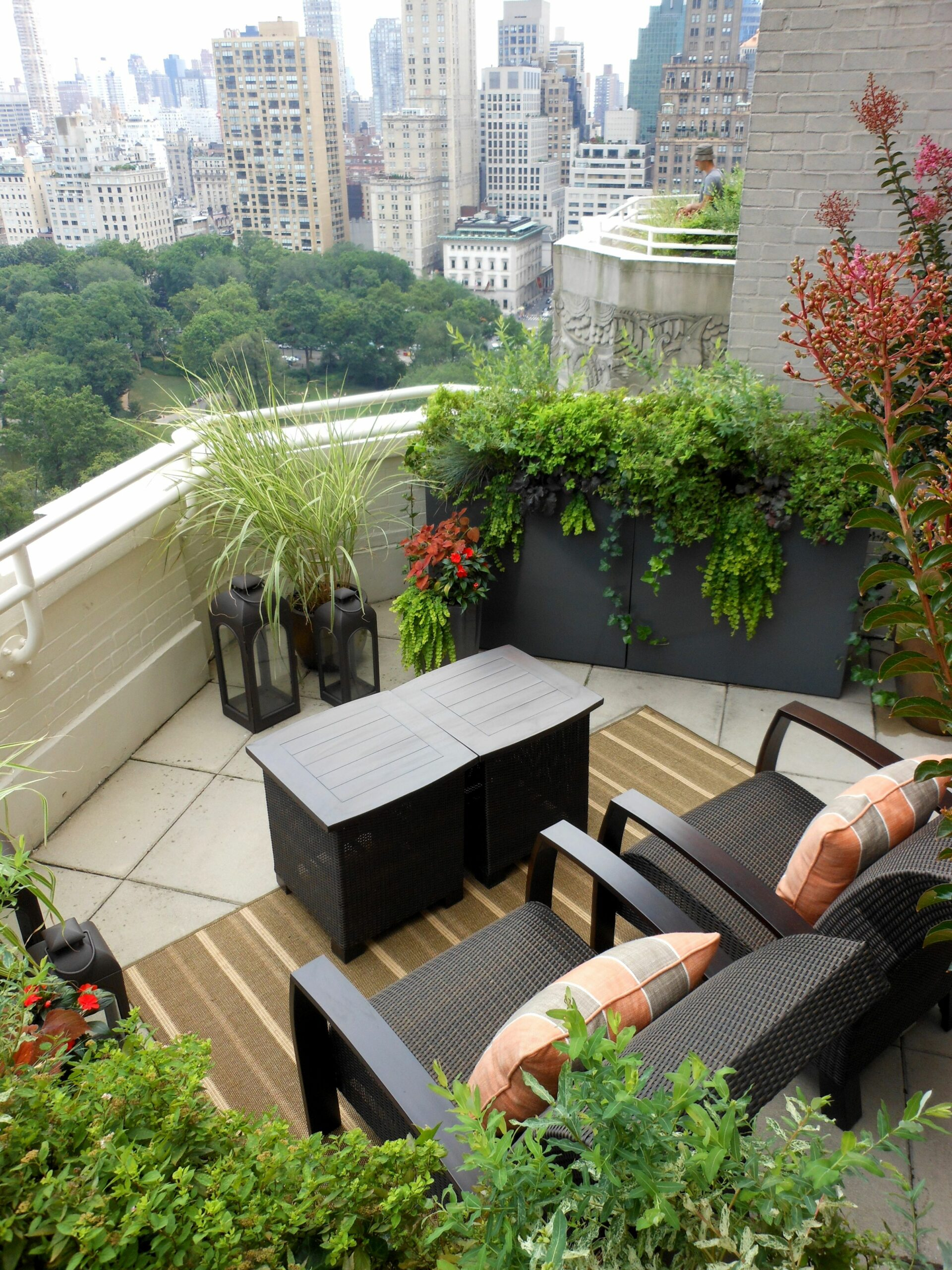 Potted Plants | Potted Plant Society | Small balcony garden ..