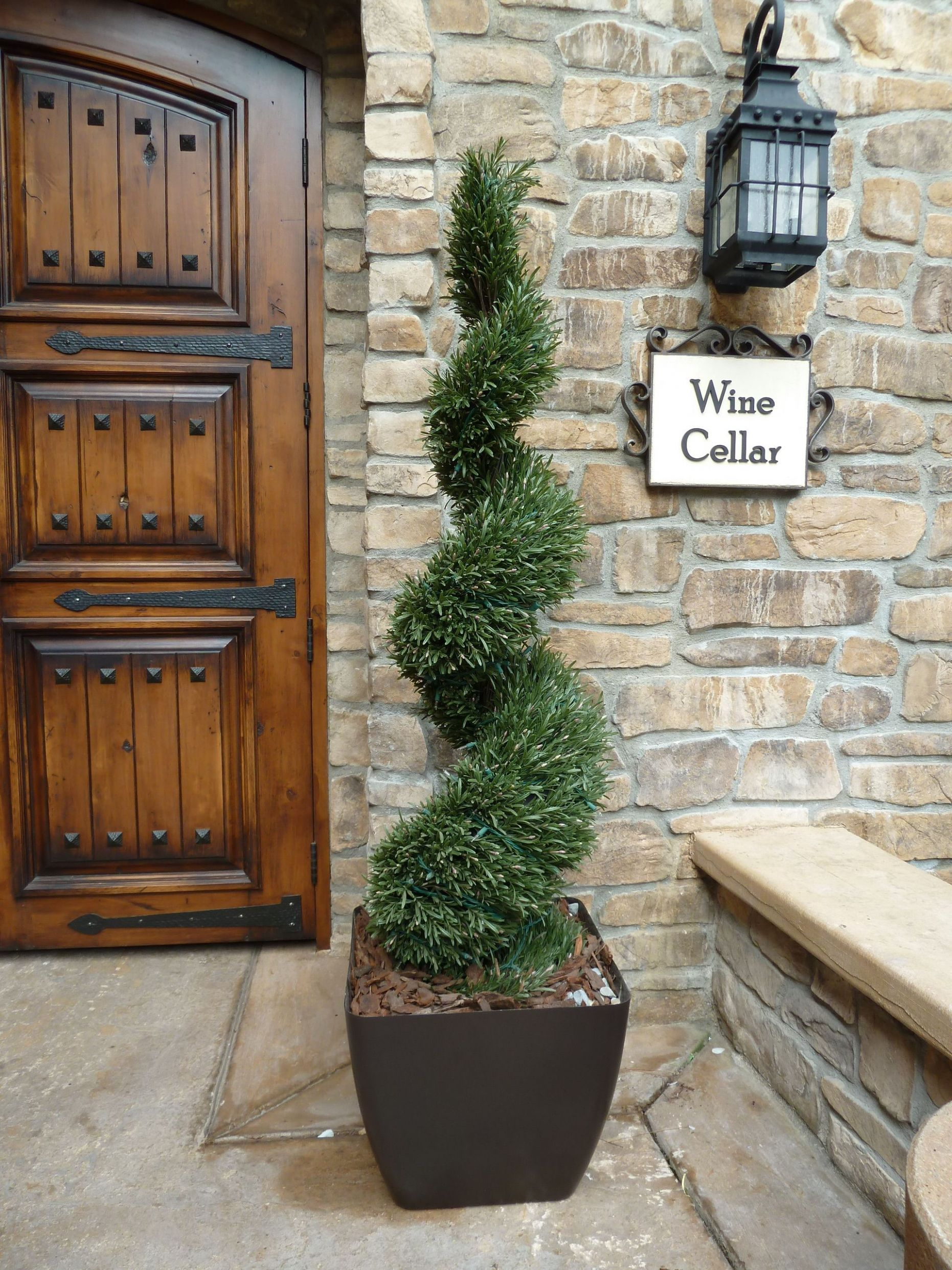 Rosemary Spiral deluxe | Topiary plants, Porch plants, Front porch ...