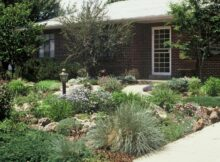 Simple landscaping ideas for front yards Backyard Ideas Without ...
