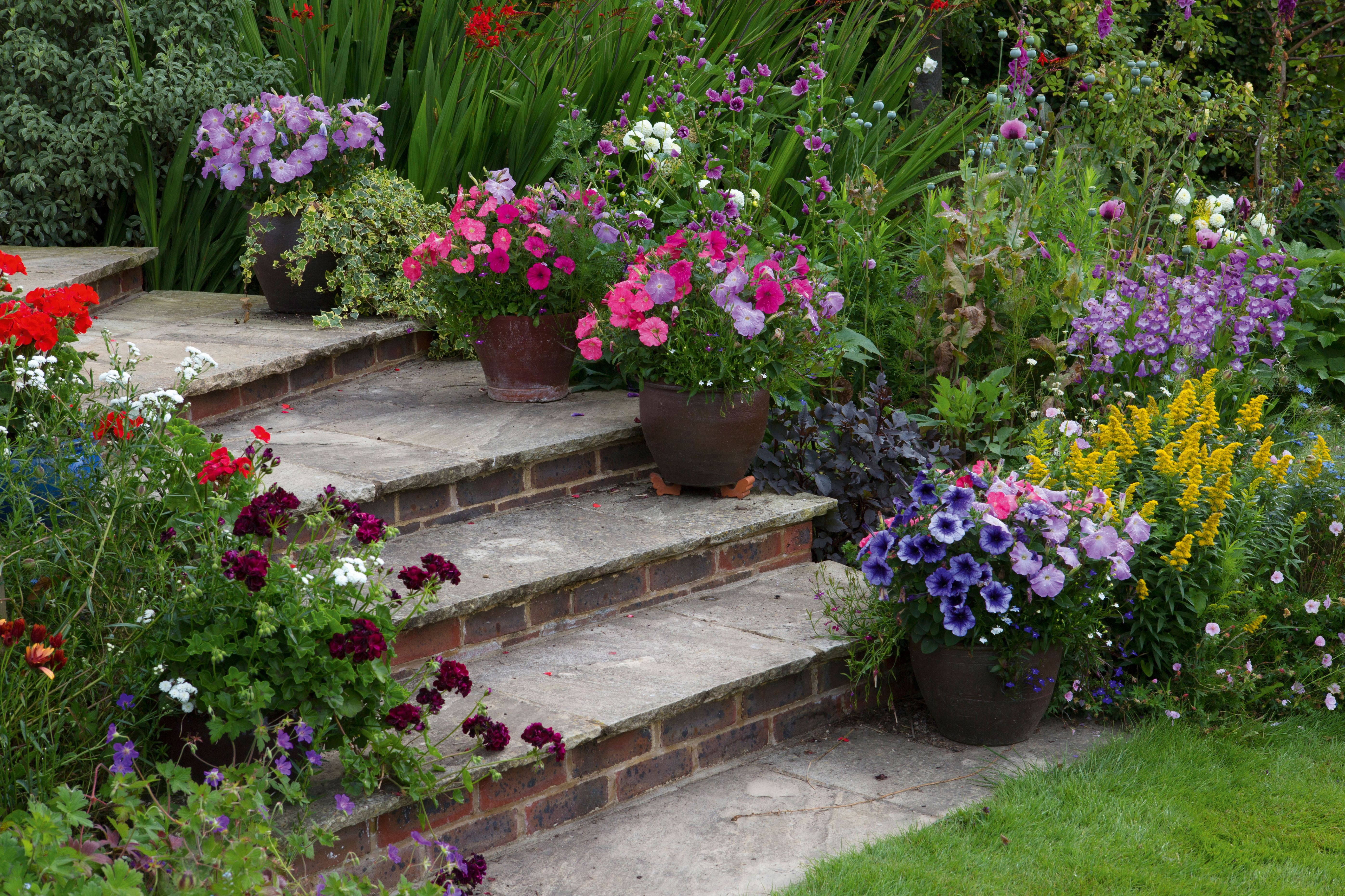 Sloping gardens: design ideas and landscaping tips | Real Homes