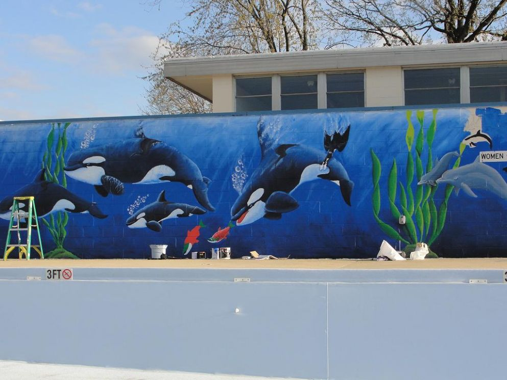 Swimming pool Whale mural by atrafeathers on DeviantArt - pool mural ideas