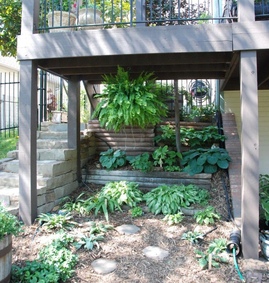 Thinking about a shade garden under the sunroom and deck | Shade ...