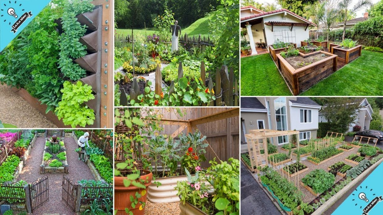 Top 9 DIY Vegetable Garden Ideas | DIY Garden - garden ideas vegetable
