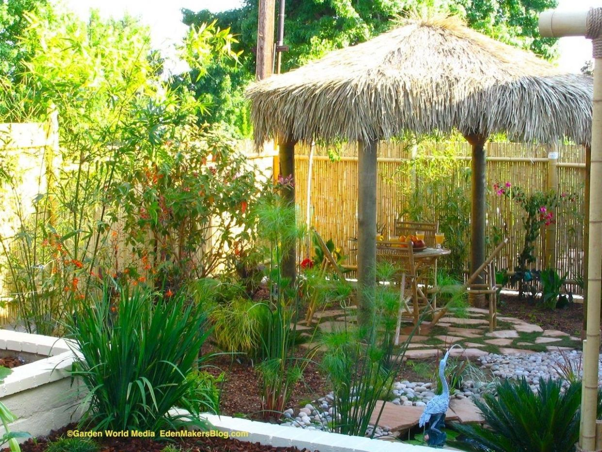 Tropical Backyard Landscaping Ideas Home Design Elements ...
