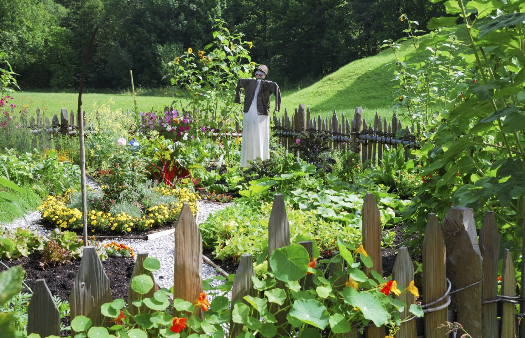 Vegetable Garden Design - Ideas For Designing A Vegetable Garden - garden ideas vegetable