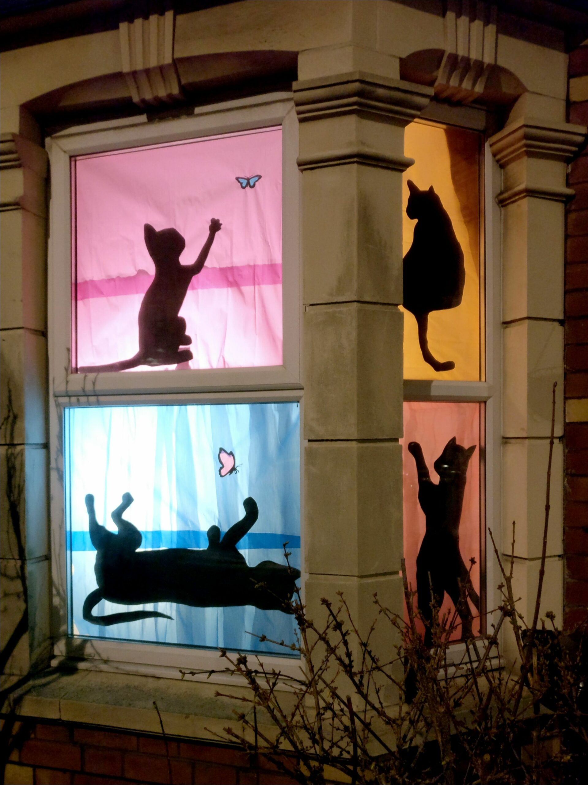 Why not create a Window Wanderland of your favourite pet ..