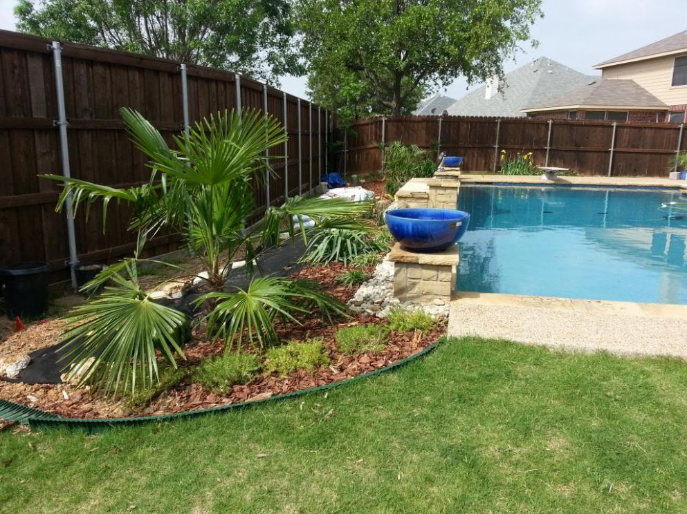Win idea: Get Pool landscaping ideas north texas - pool landscaping ideas north texas
