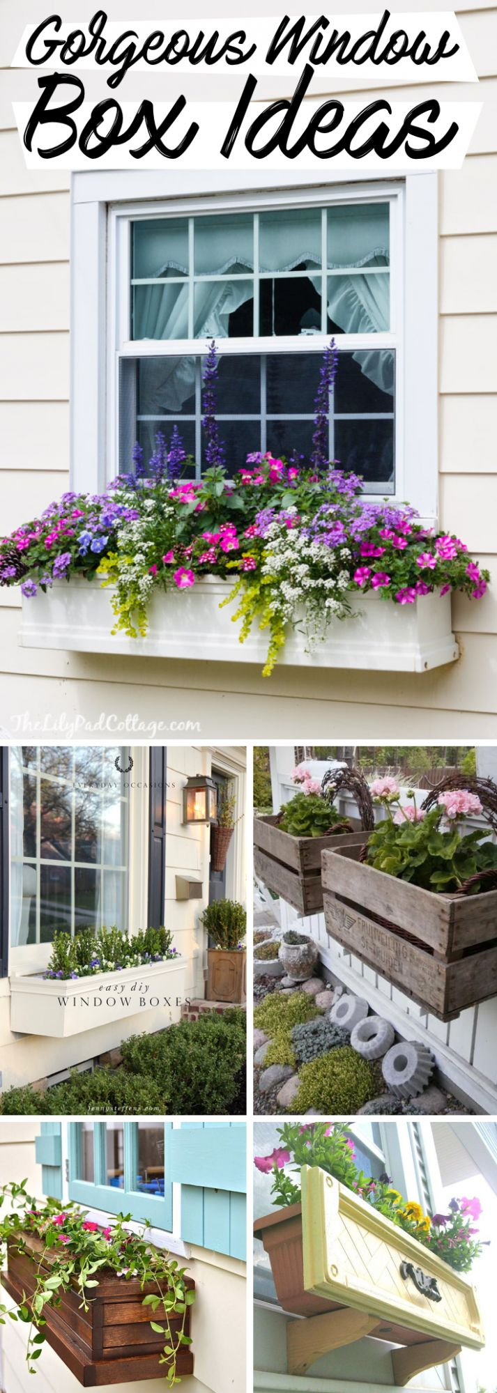 10 Gorgeous Window Box Ideas Adding Floral Magnificence To Your Home! - window box ideas
