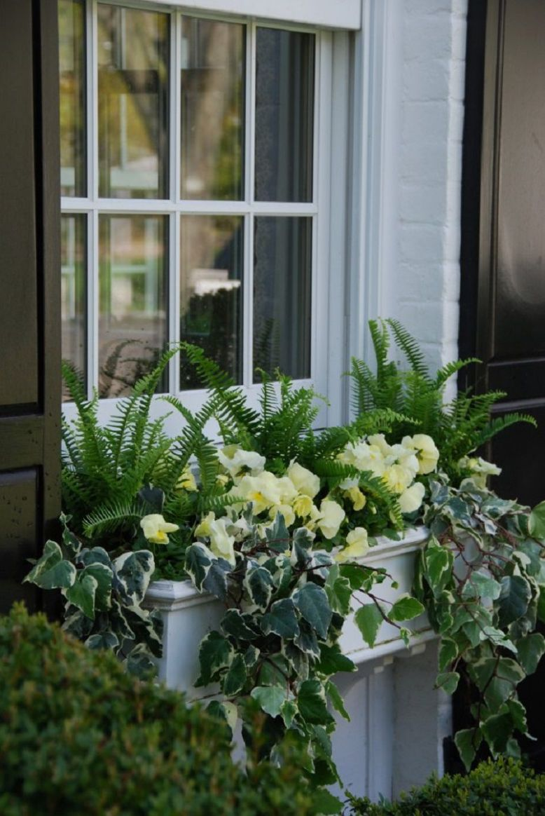 10 Gorgeous Window Box Ideas for Spring - window box ideas
