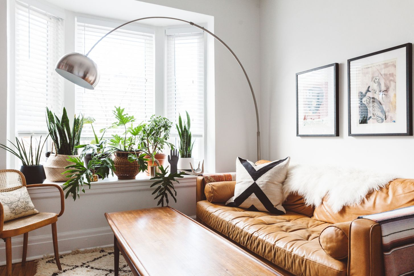 11 Plant-Filled Living Rooms for Serious Decor Inspiration