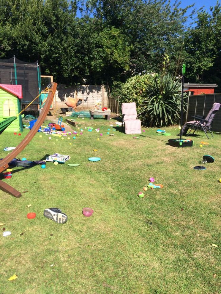 AIBU Or is this just tragic? What can I do? | Mumsnet - garden ideas mumsnet