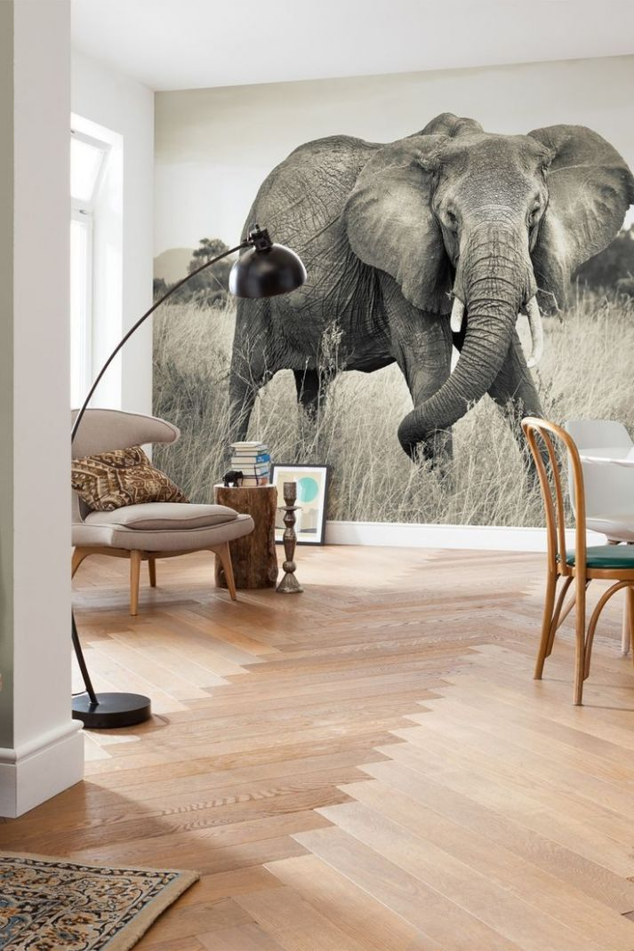 Elephant Bedroom Decor - top Rated Interior Paint Check more at ..