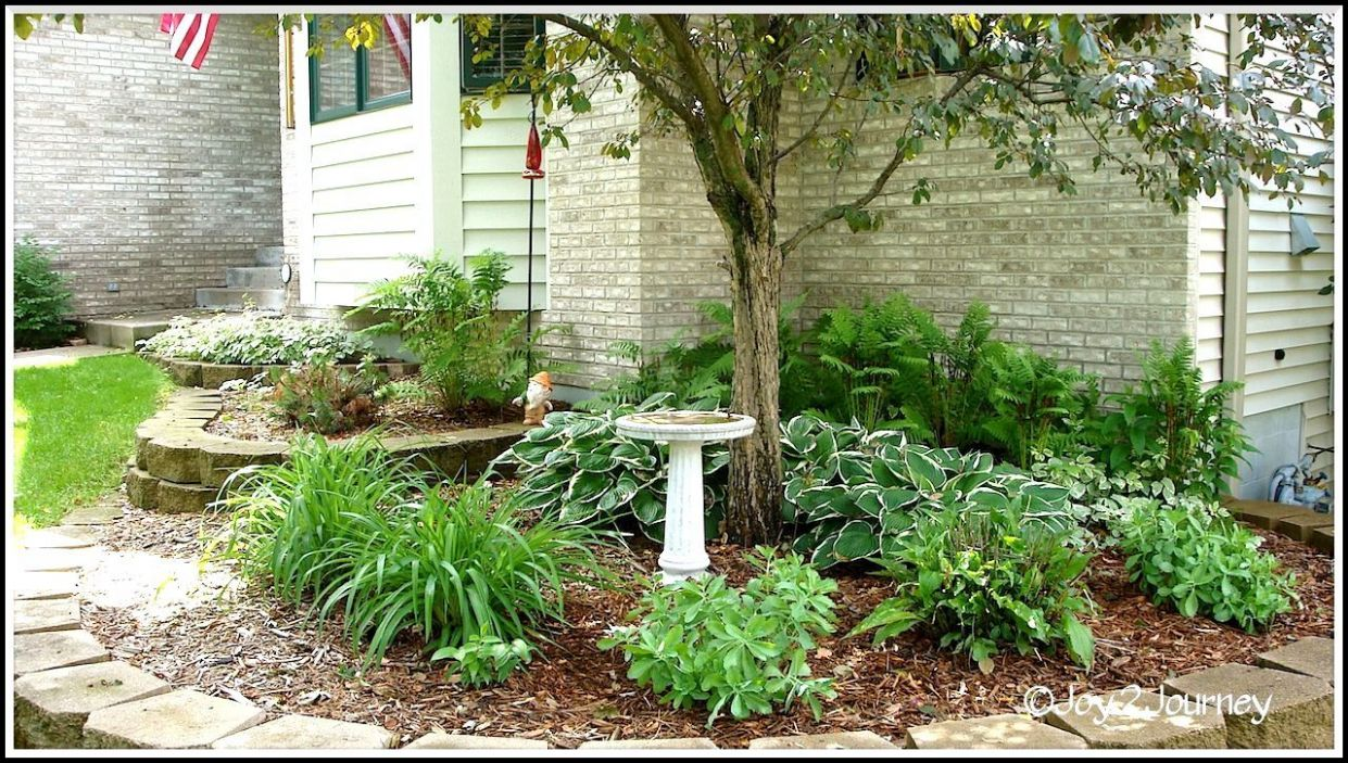 Front Yard Landscaping Under Window Landscaping Ideas Front Yard ...