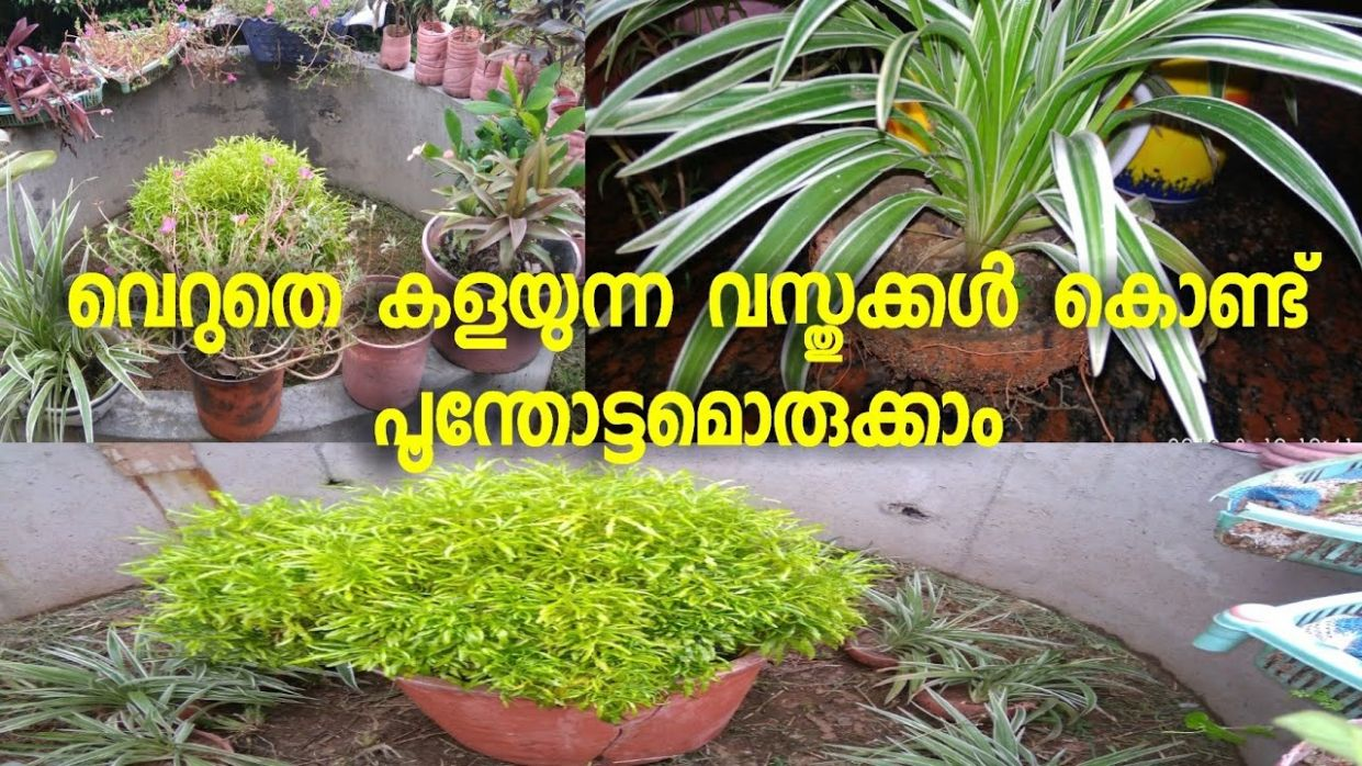 How to make Garden with Waste Material||Malayalam - garden ideas malayalam