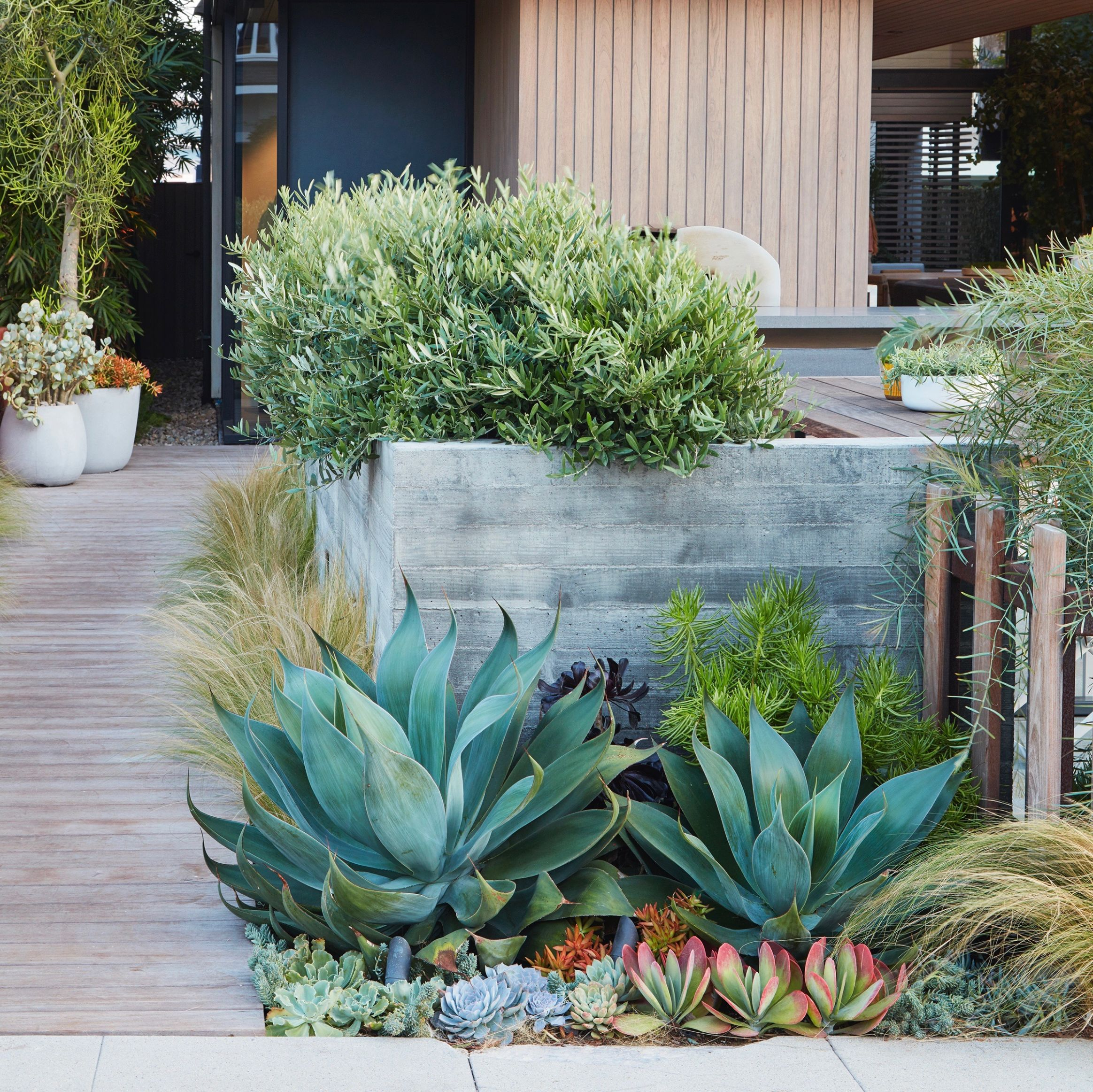 Low-Water Landscapes: 10 Ideas for Dry Gardens, from Designer ...