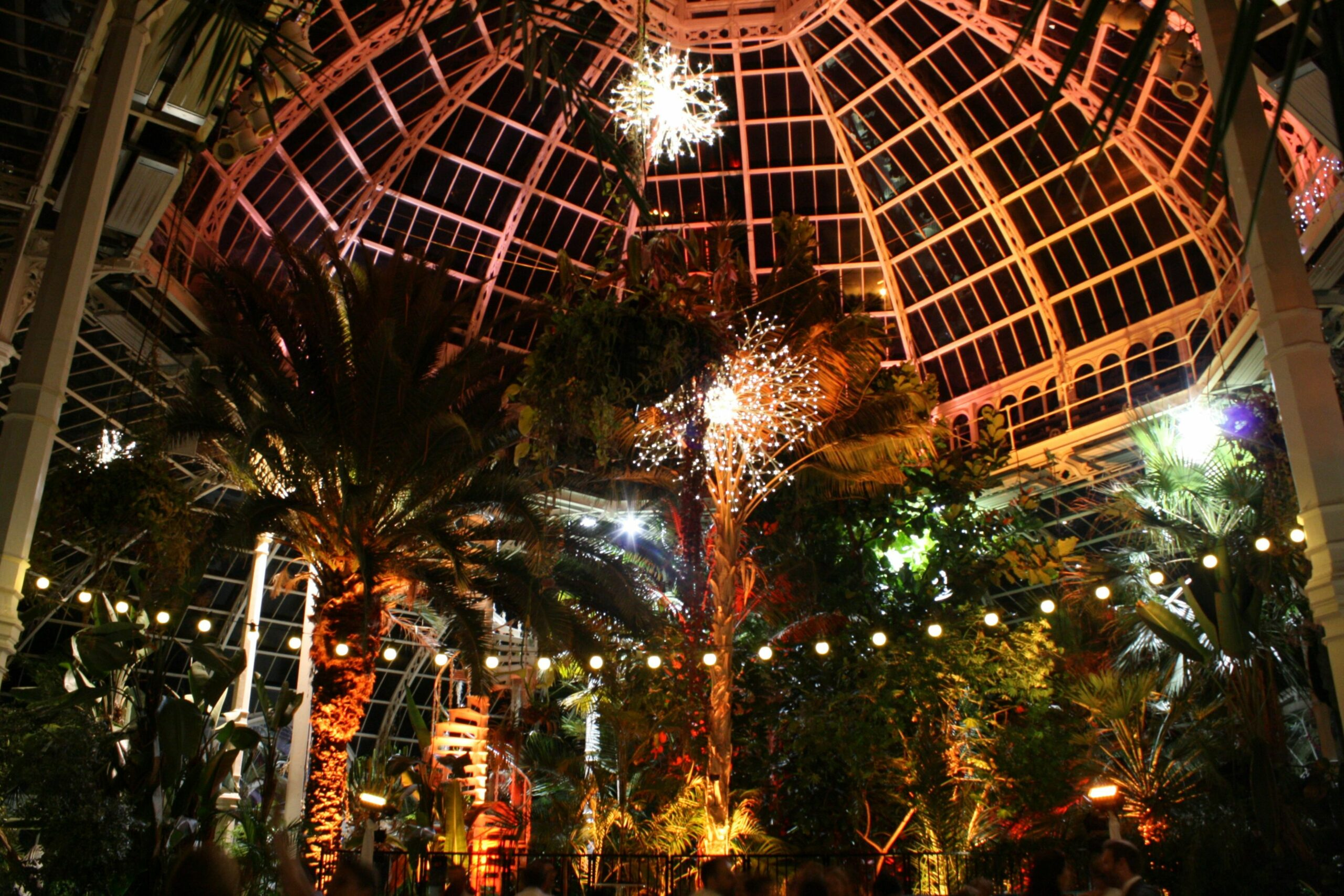 Sefton Palm House, Liverpool - Ultra Lighting | Our wedding ..
