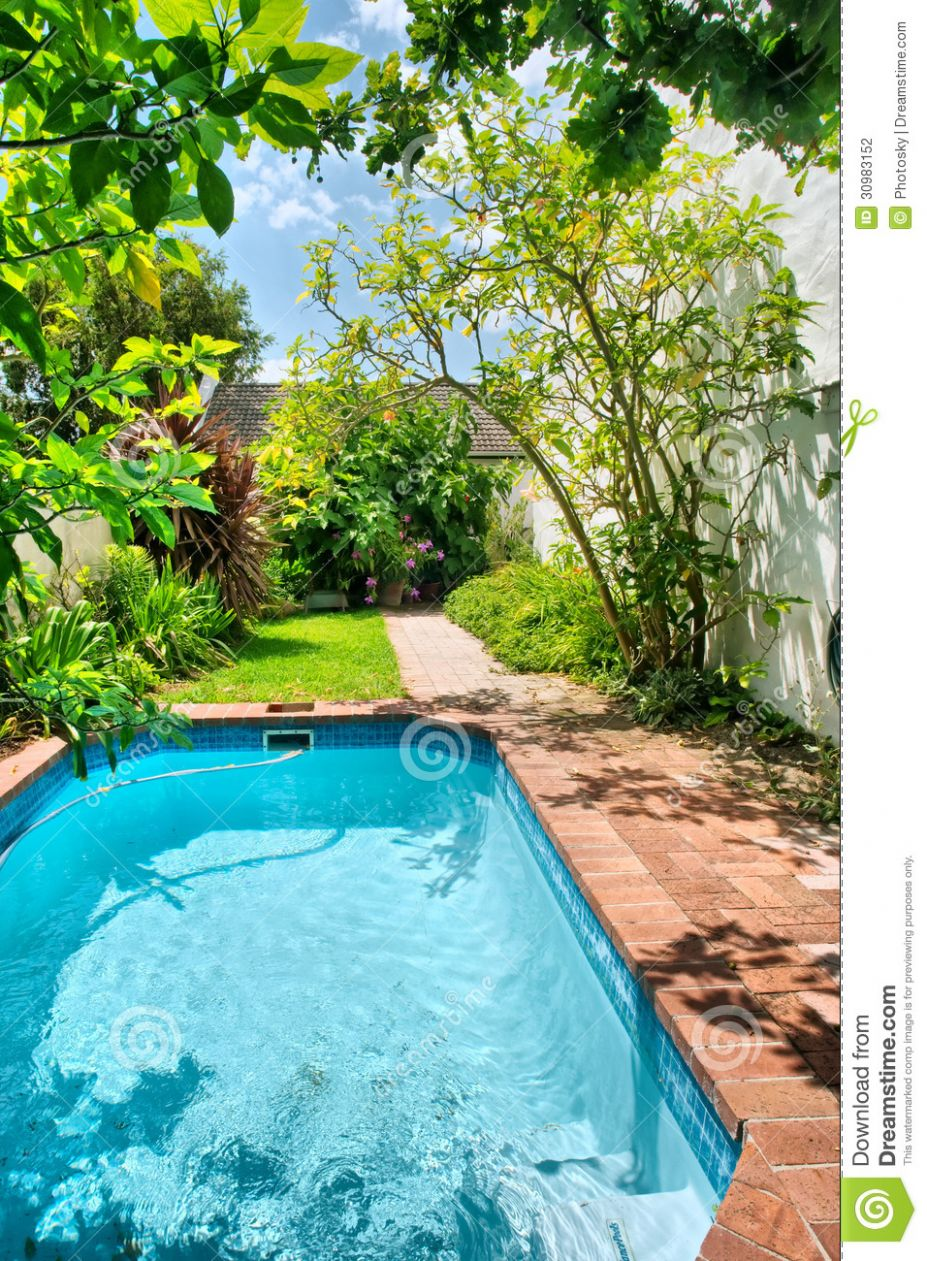 Small Swimming Pool And Garden Stock Photo - Image of african ..