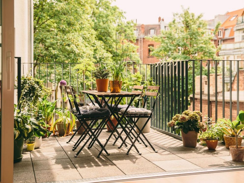 10 Awesome Balcony Garden Ideas and Tips - Plants for your Balcony