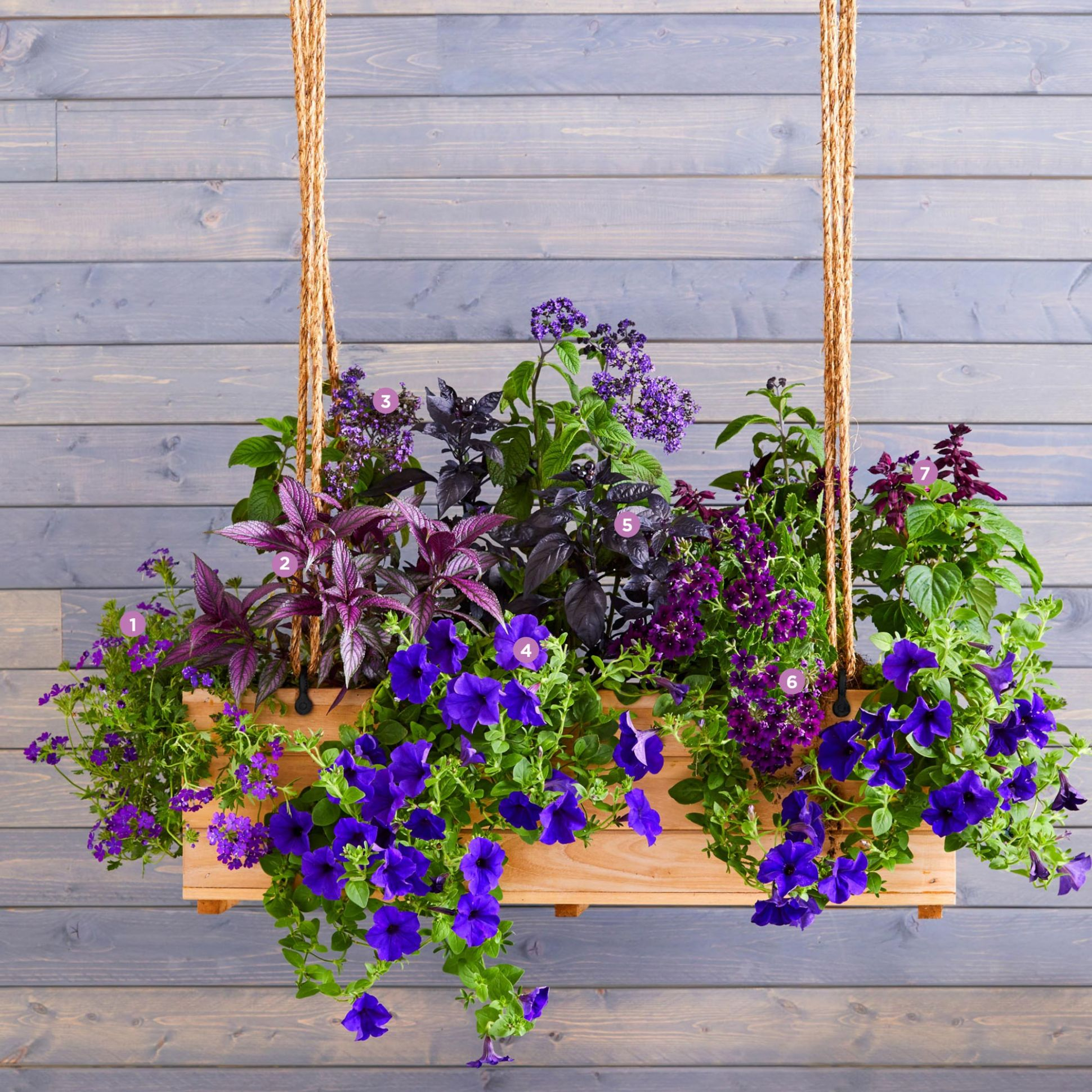 10 Bright and Beautiful Window Box Planters | Midwest Living - window box ideas no plants