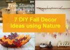10 DIY Fall Decor Ideas using Nature - DIY Home Decor