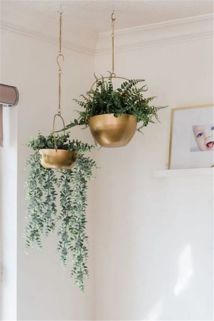 10 Impressive And Simple Indoor Hanging Plants Ideas For Your Home ...