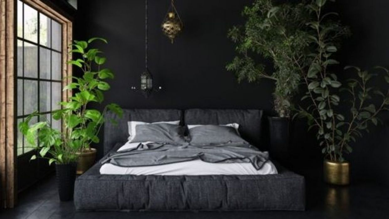 10 Proper Ideas To Decorate Bedroom Plants Decor In 10 ...