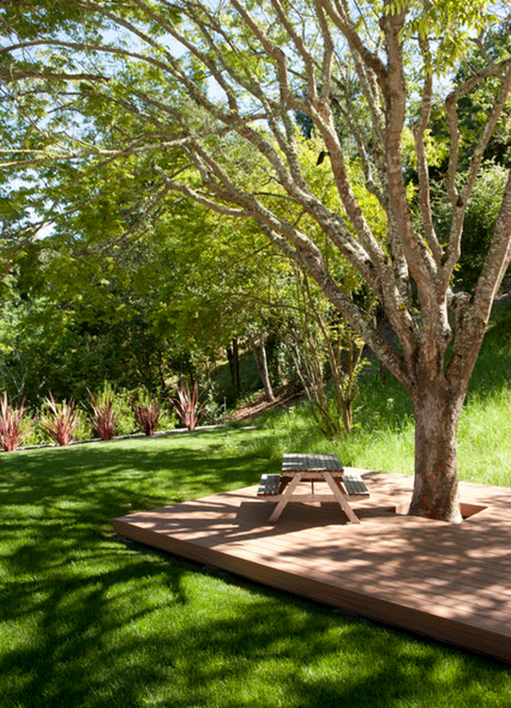 11 Amazing Big Tree Landscaping Ideas - HOMISHOME - backyard ideas under $10 000