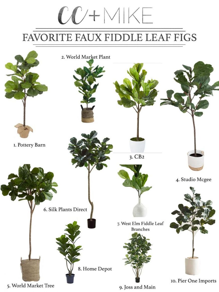 11 Beautiful Faux Fiddle Leaf Fig Trees for Home Decor (With ..