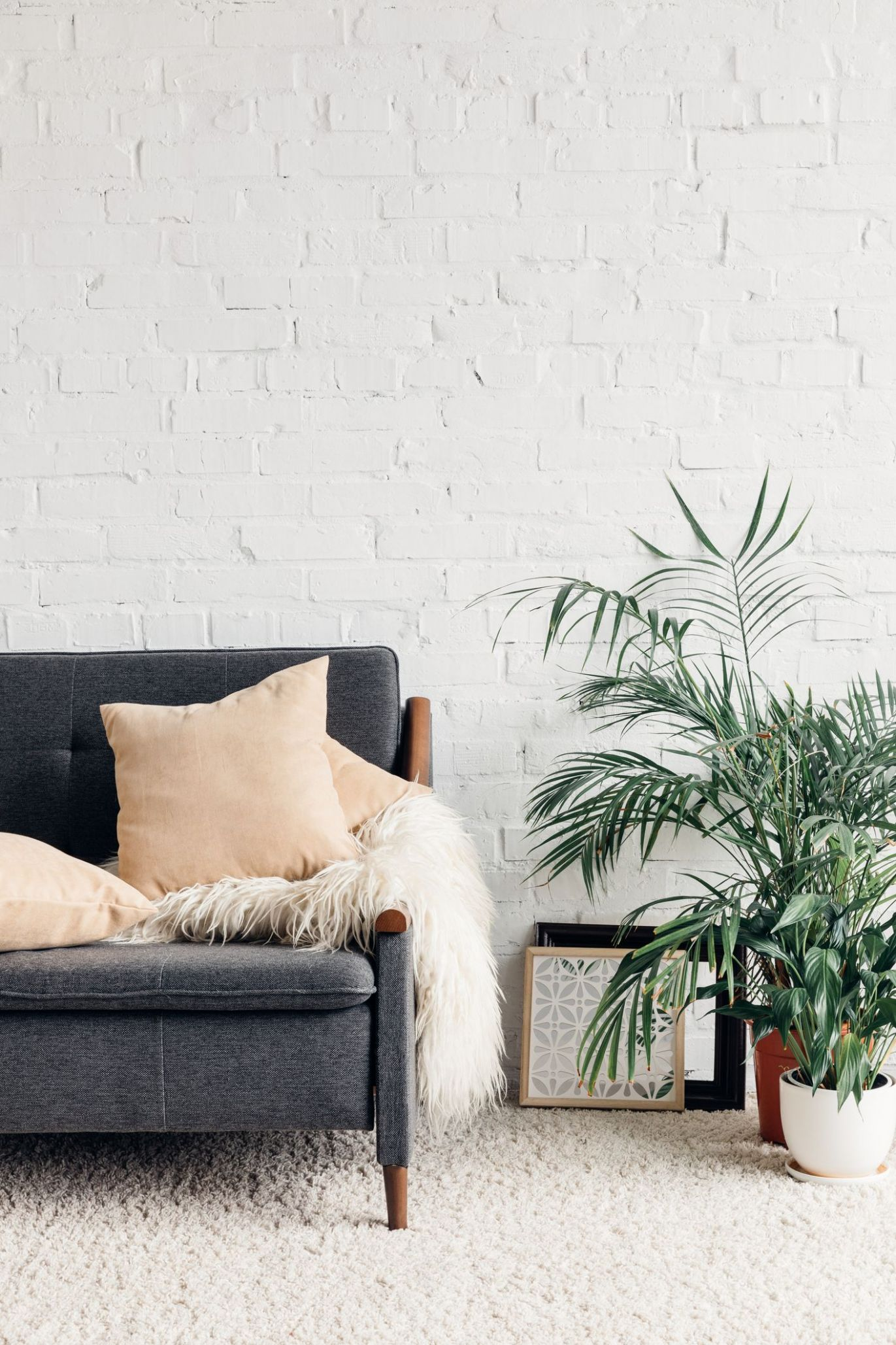 11 Best Living Room Plants - Living Room Indoor Plants to Buy Now - living room ideas with plants