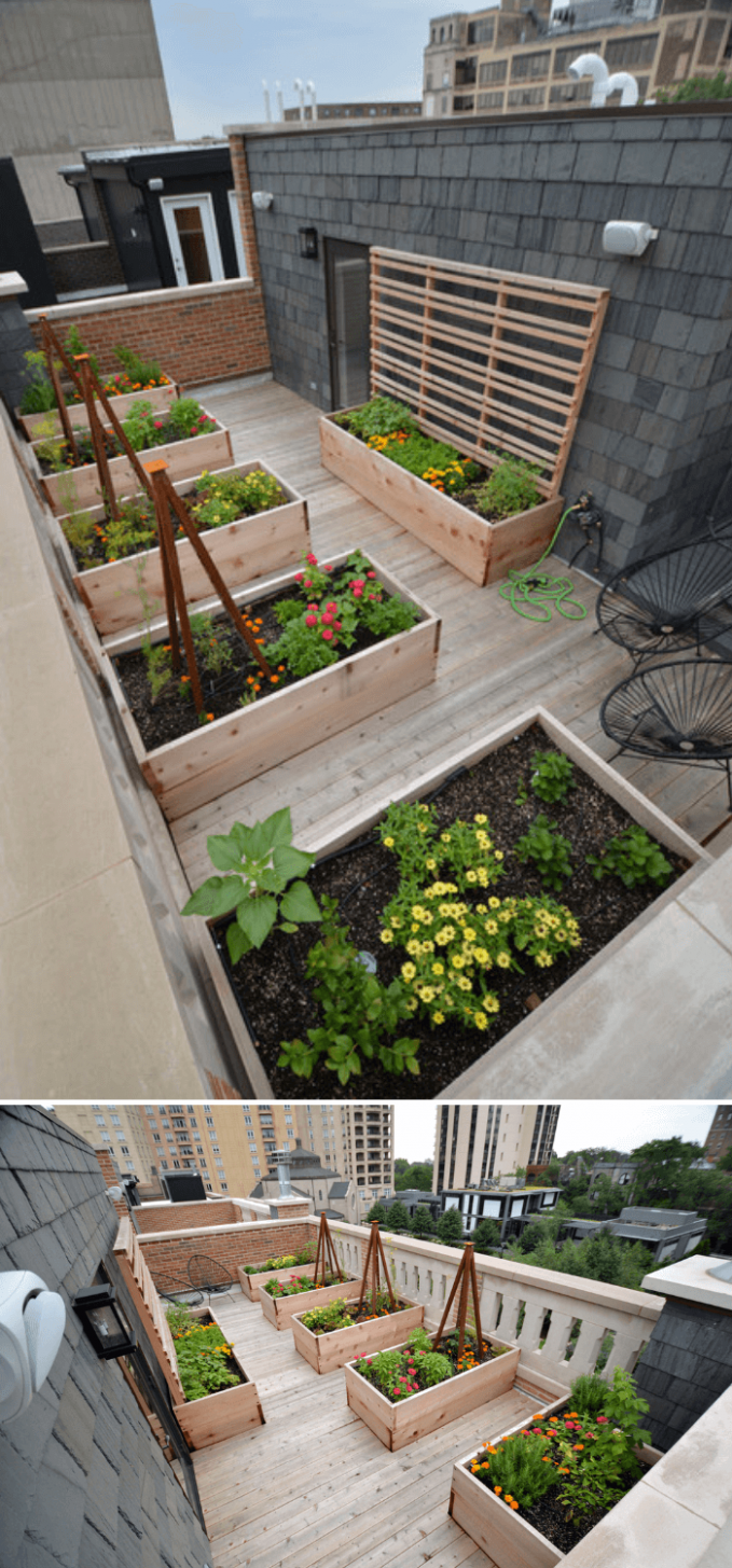 11+ Best Rooftop Garden Ideas & Designs For 11 | Rooftop terrace ..