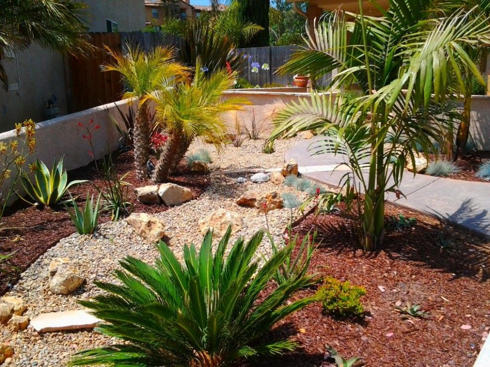 11 Some of the Coolest Designs of How to Upgrade Desert Backyard ..