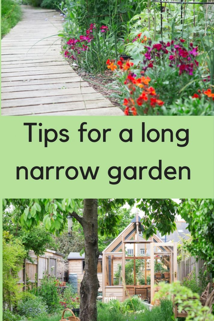 11 steps to the long thin garden of your dreams - The Middle-Sized ..