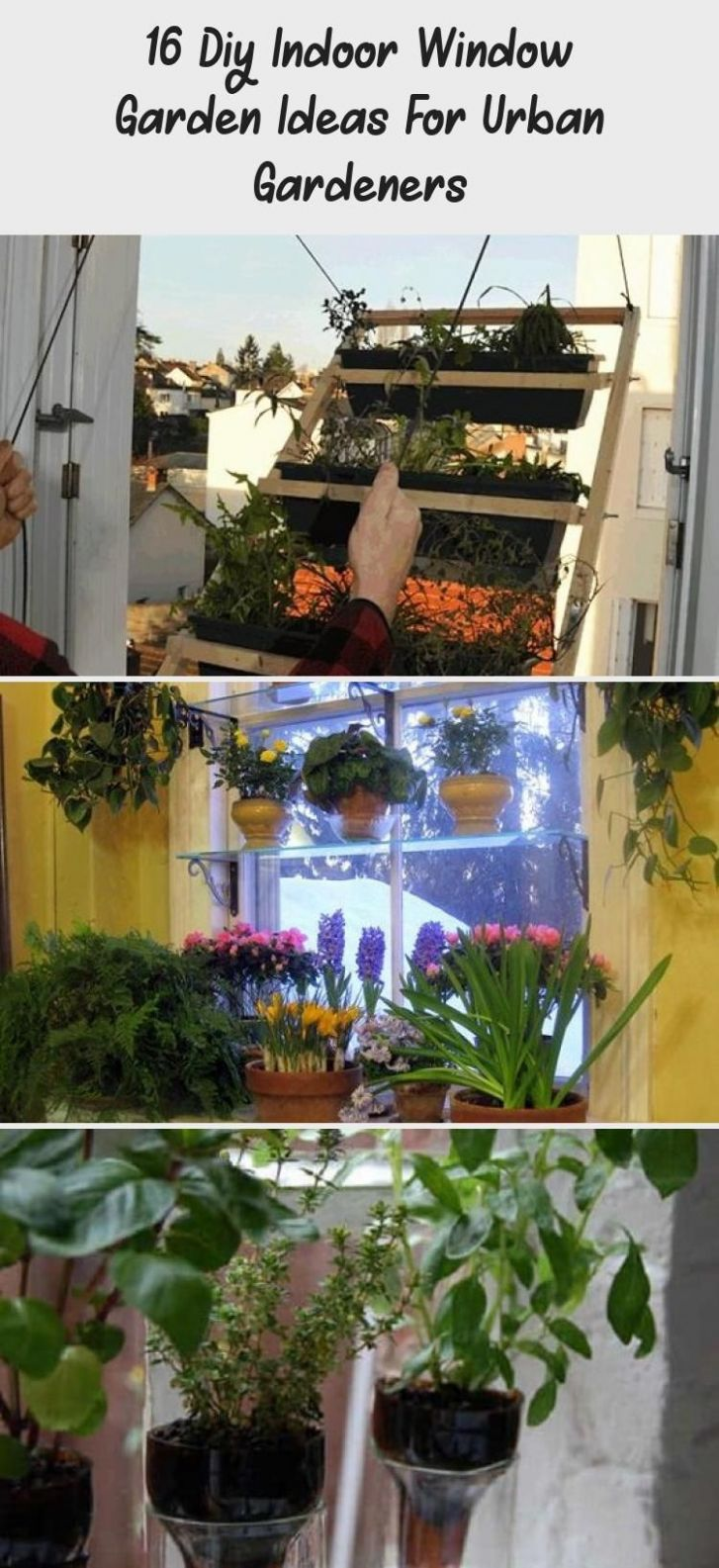 12 Diy Indoor Window Garden Ideas For Urban Gardeners in 12 ..