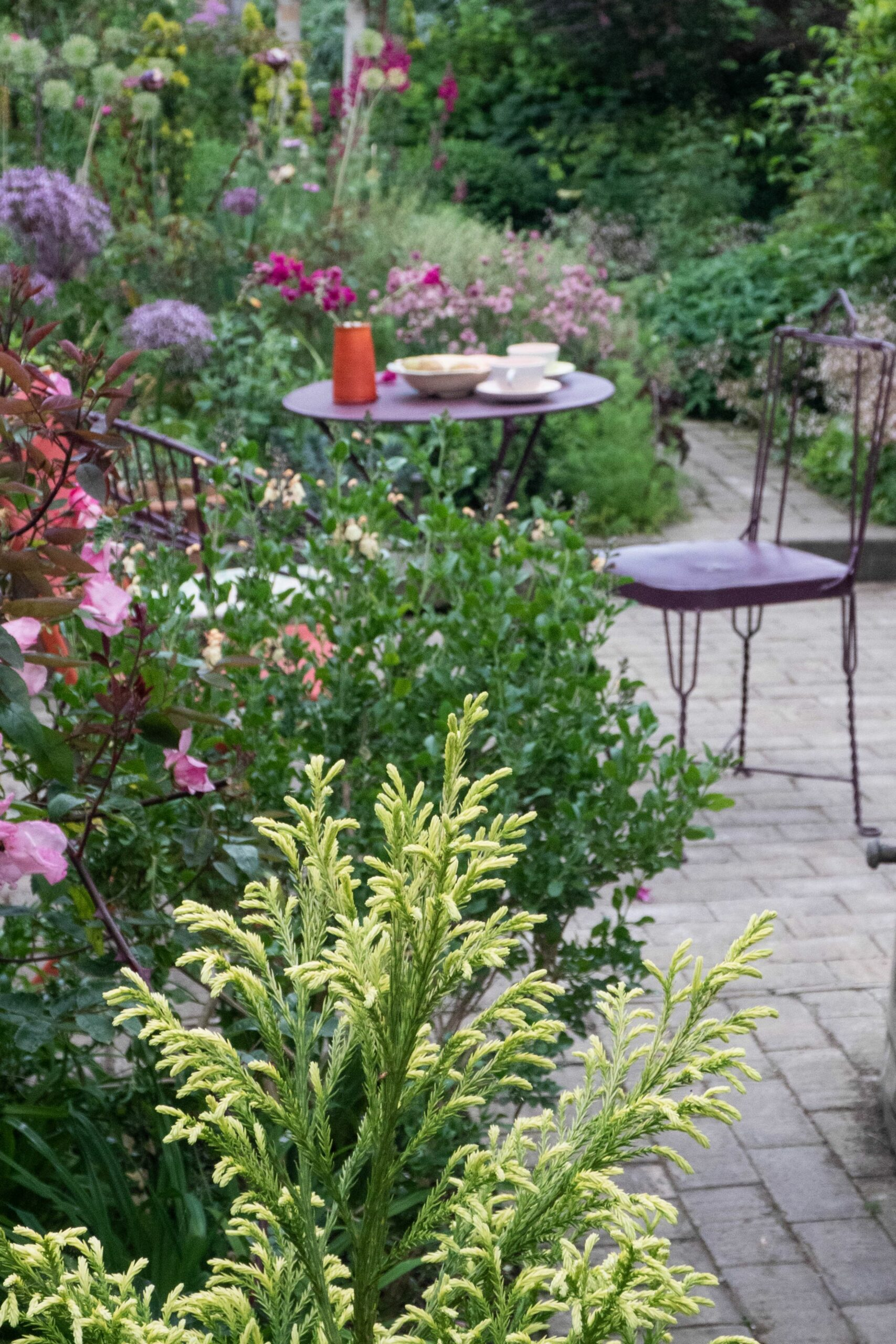12 garden planting ideas for small gardens - The Middle-Sized ..