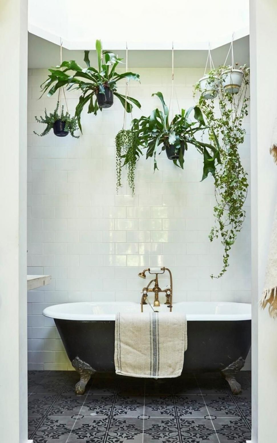 12+ Perfect and Beautiful Hanging Bathroom Plants Decor Ideas ..