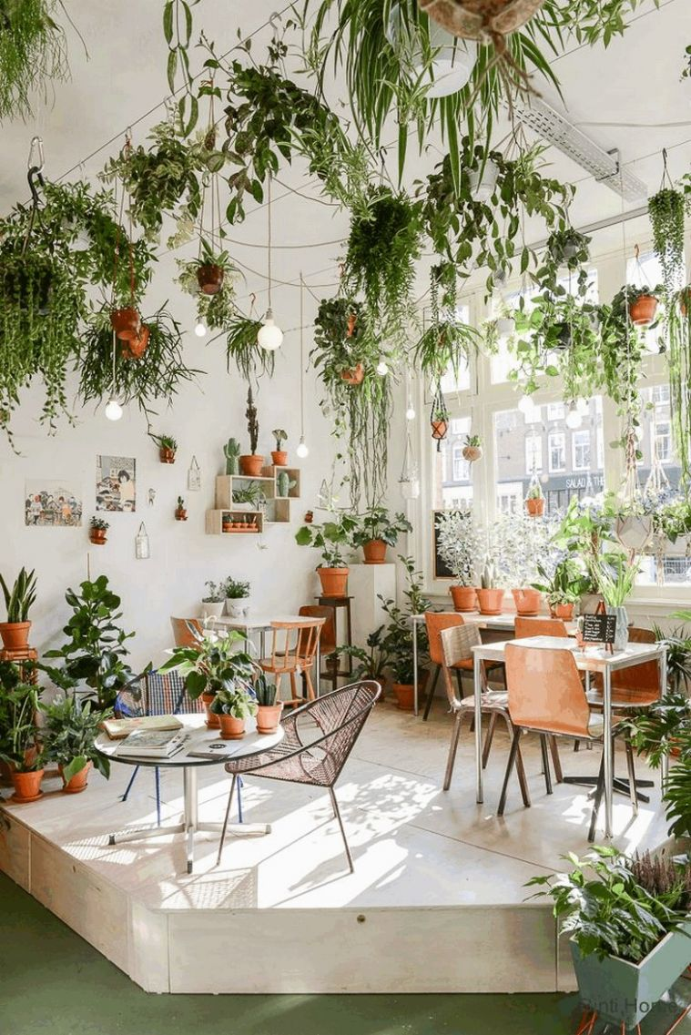 9 beautiful hanging plants ideas for home decor 9 | homezideas