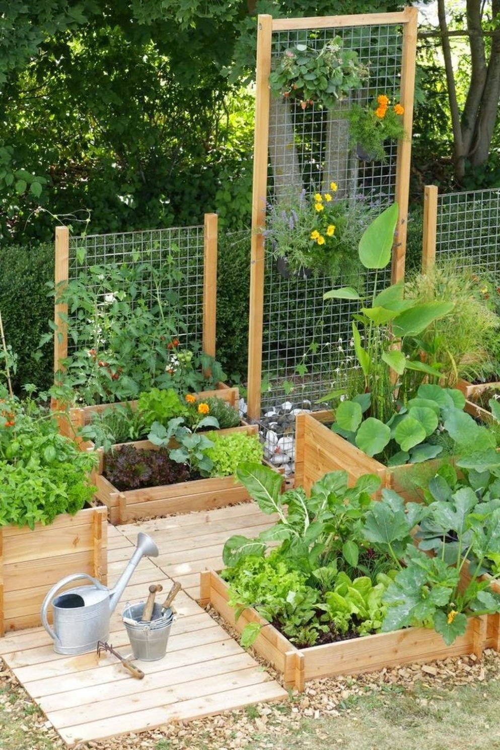 9+ Cozy Small Vegetable Garden Ideas On A Budget | Small ...