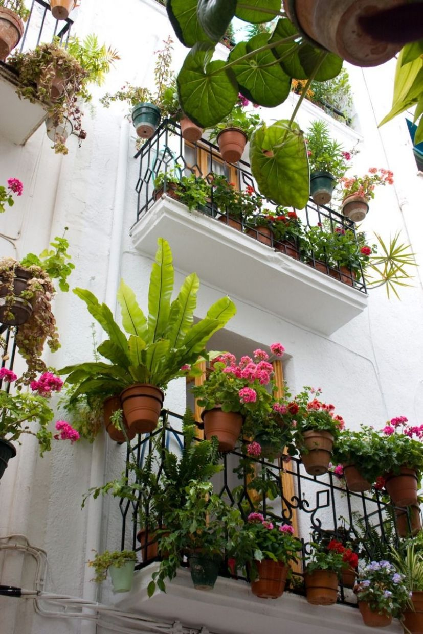 a balcony garden in france The French have a special knack of ...