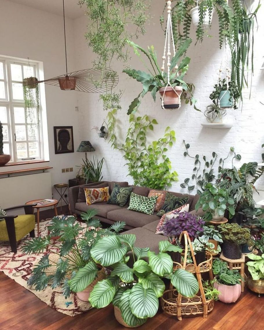 Amazing Indoor Jungle Decorations Tips and Ideas 10 - Hoommy