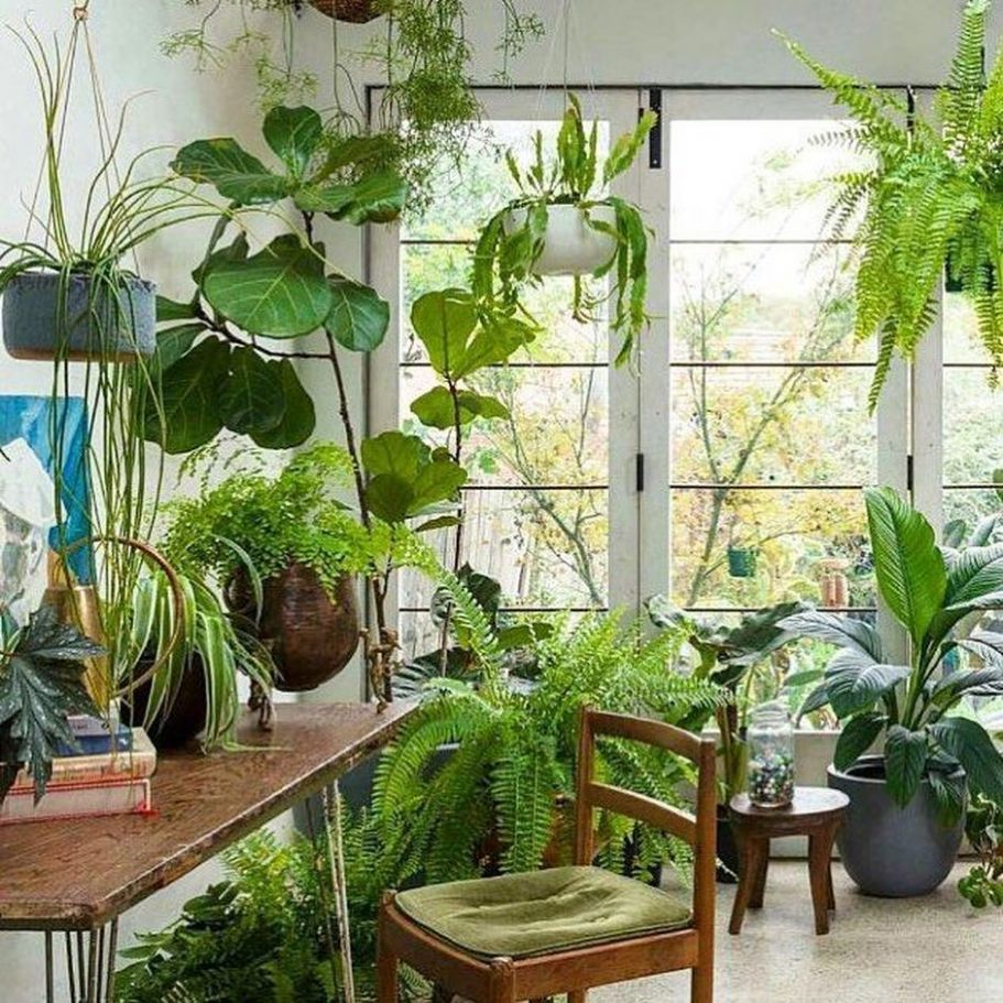 Amazing Indoor Jungle Decorations Tips and Ideas 12 - Hoommy.com