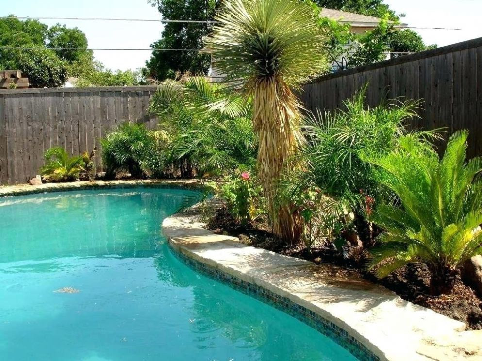 Astounding Backyard Landscaping Ideas Around Pool (With images ...