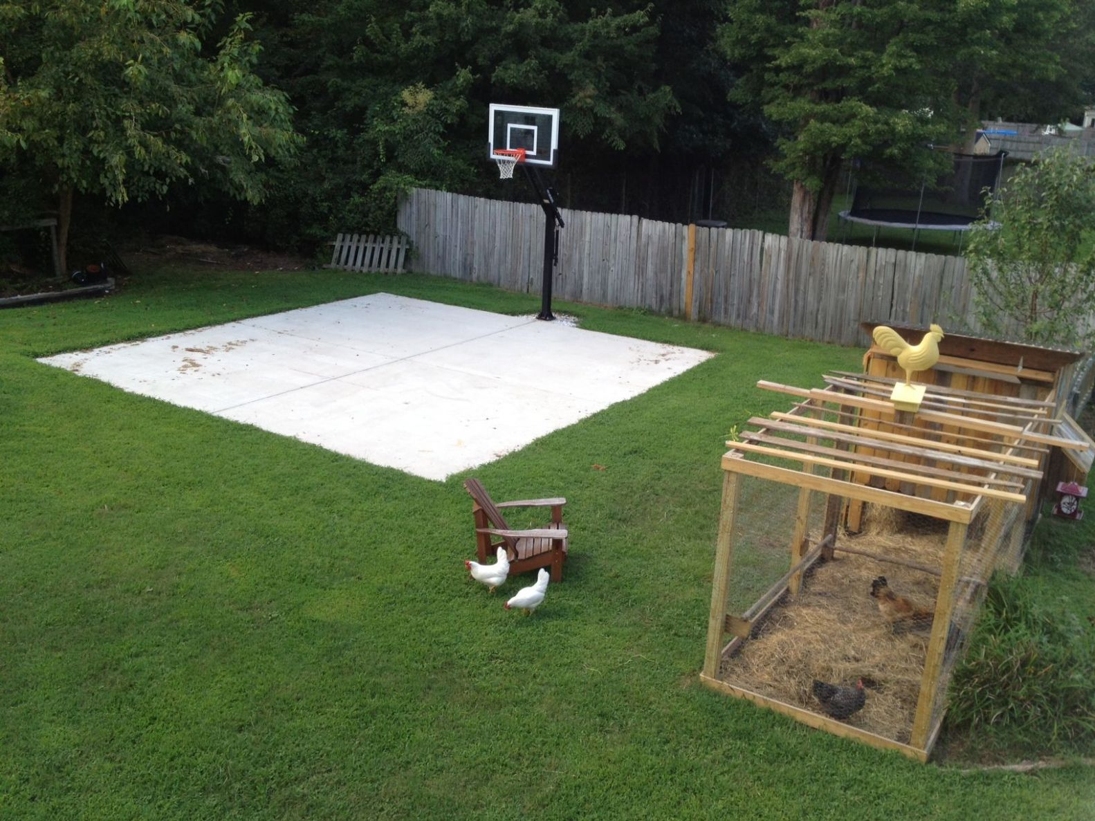 Backyard basketball on a concrete slab. Well done. (With images ...