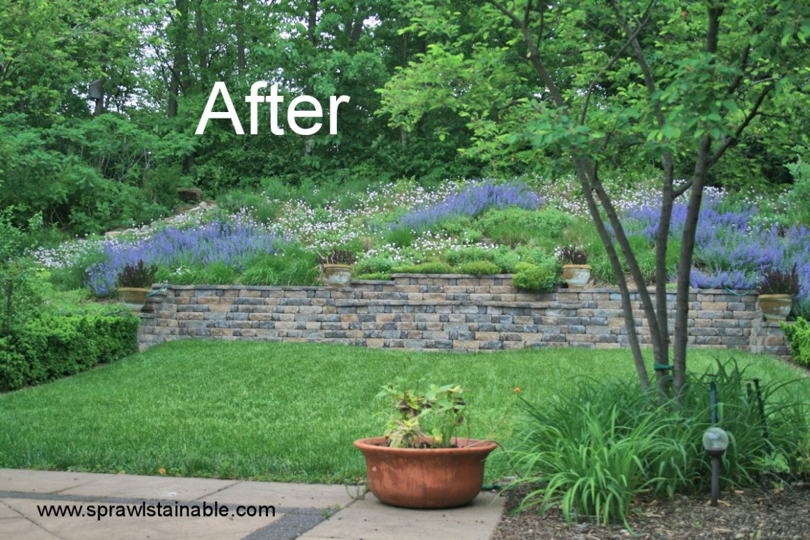backyard hill landscaping ideas | Sprawlstainable - backyard ideas hill
