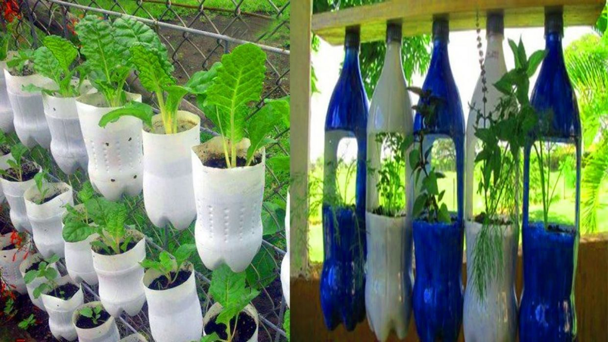 Beautiful Garden ideas Using old plastic Bottles | Bottle garden ...