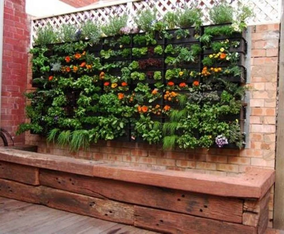 Beautiful Vegetable Gardening Ideas For Small Spaces | Vertical ..