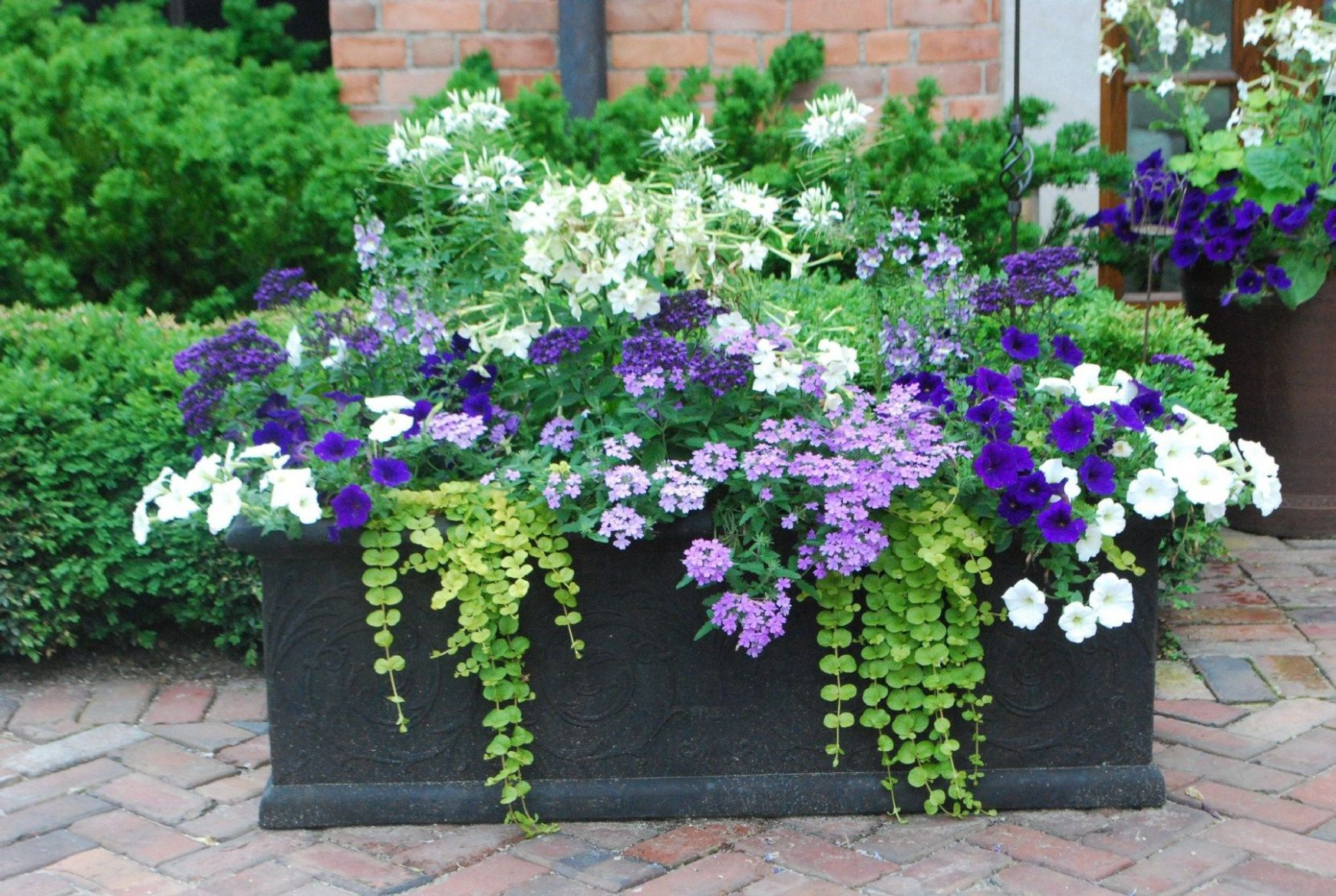 Best 12 Stunning Summer Planter Ideas to Beautify Your Home ..