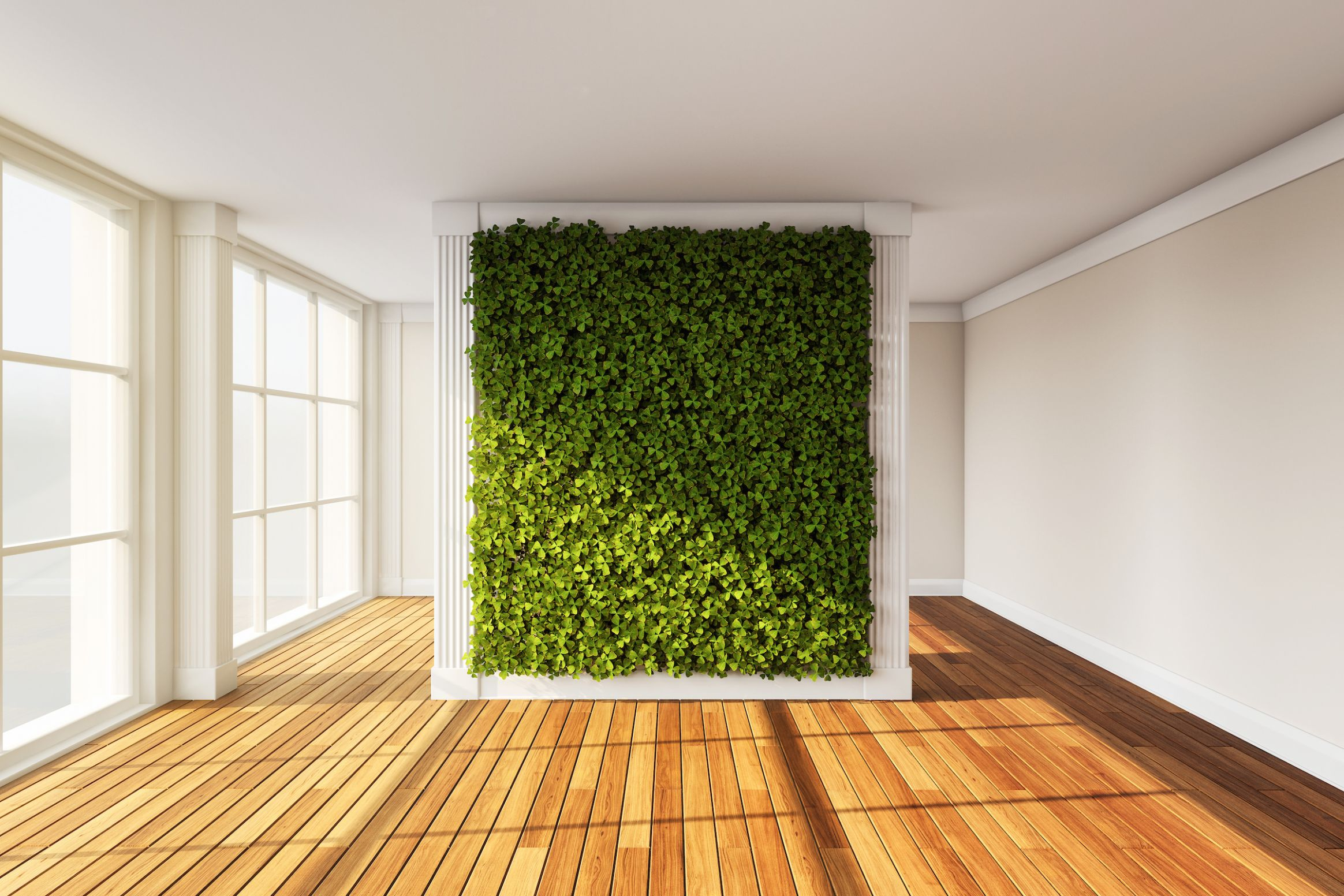 Breathtaking Living Wall Designs for Creating Your Own Vertical ..