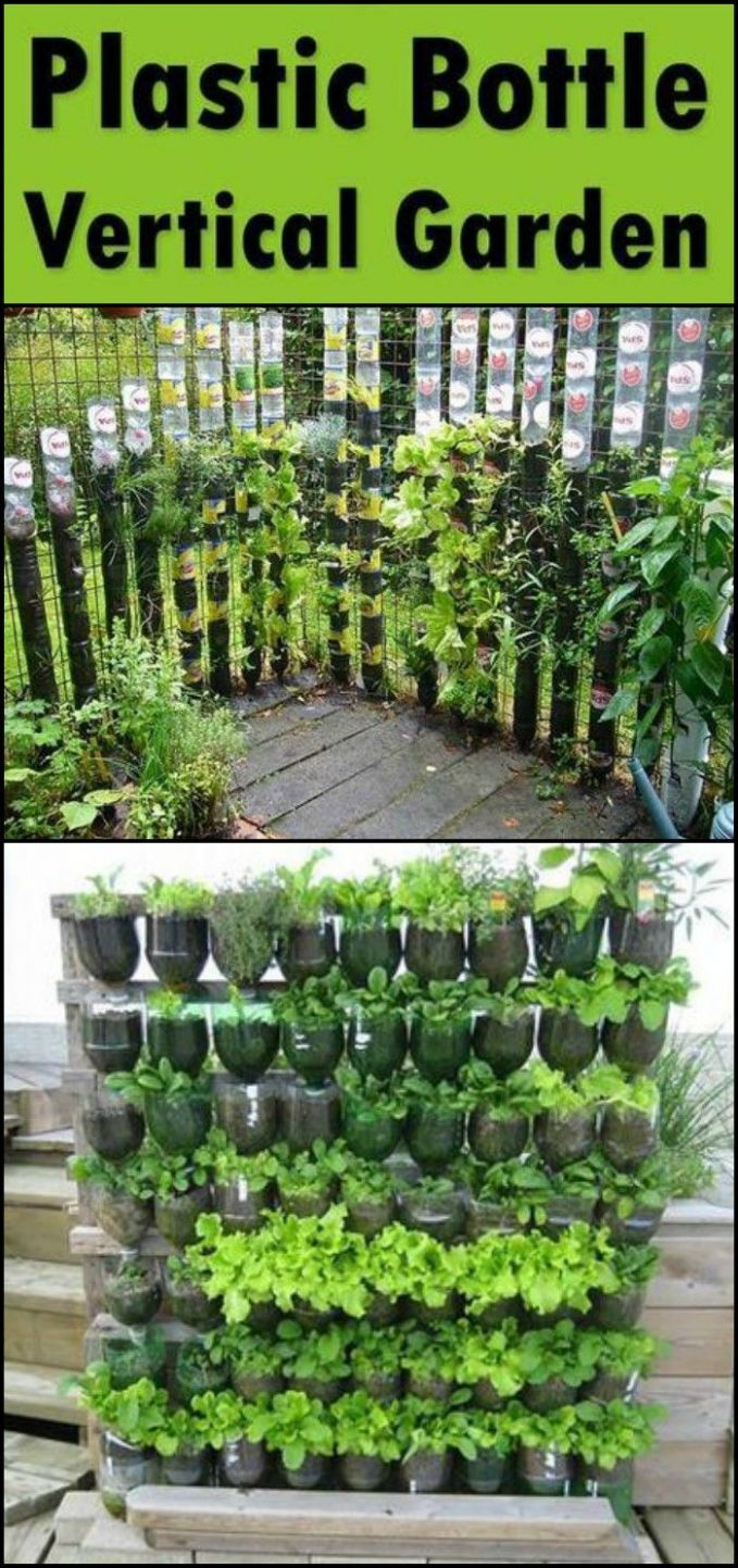 DIY Vertical Garden Ideas for Indoors and Outdoors (With images ..