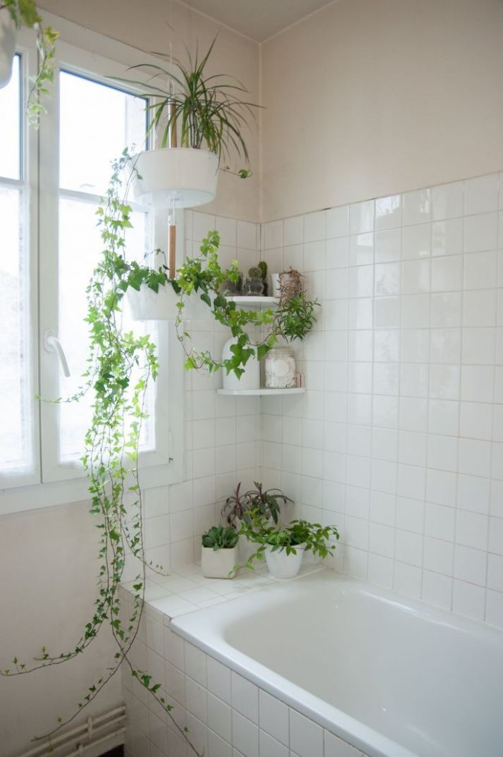 Easy Decor Ideas To Transform Your Bathroom Into A Relaxing Oasis ...