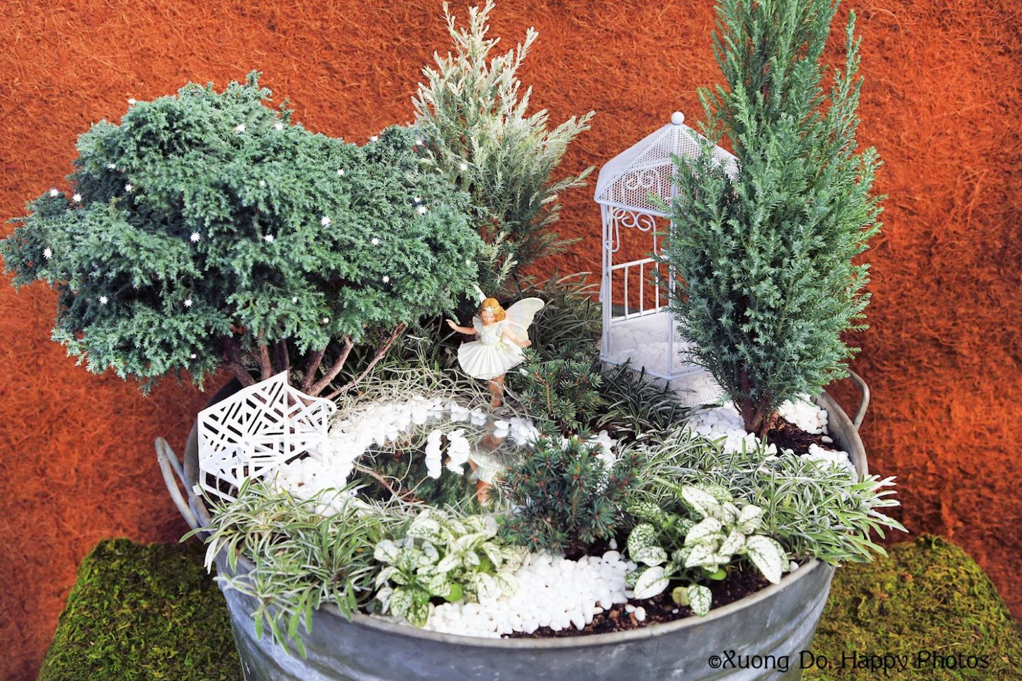 Fairy Gardens: Preparing Them for Winter plus Book Giveaway - garden ideas for winter